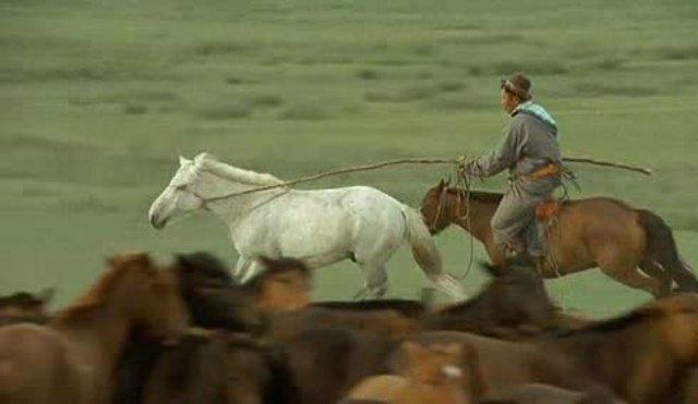 Das Lied von den zwei Pferden Video 3